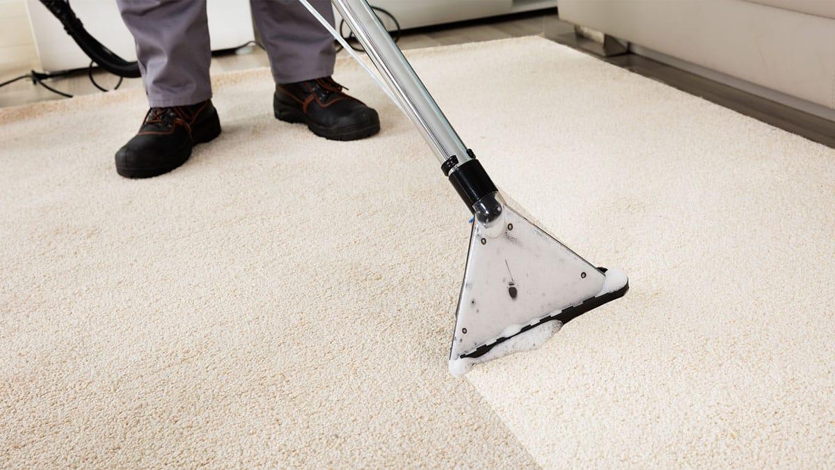 Видалення плям з килимів та його професійна чистка