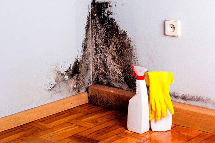 Уборка запущенных квартир